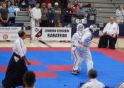 2017 World Koshiki Super Karatedo Championships