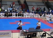 2017 World Koshiki Super Karatedo Championships
