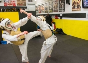 Training at Angry Monkey MMA - March 2017