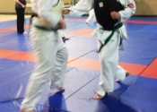 Paul in Action - Saturday's class with Shihan Paul Jackman from London, Ontario